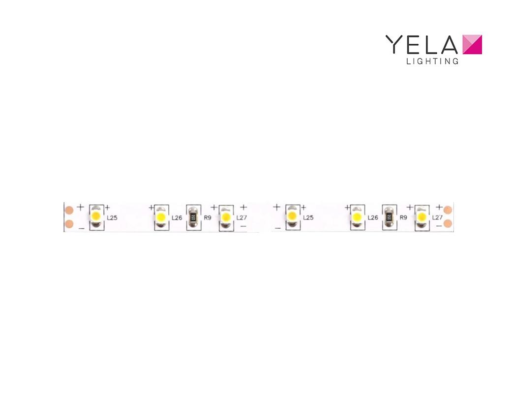LEDSign Flexline SMD3528