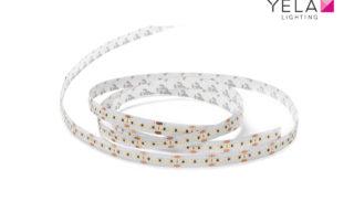 LEDSign Flexline SMD2216 240L/m